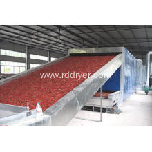 Professional Food Processing Machineries Pasta