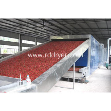 Hot Sell Fruit Drying Machine