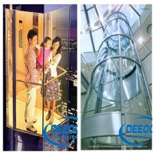 450kg Sicherer Wirtschafts-Sightseeing-Lift
