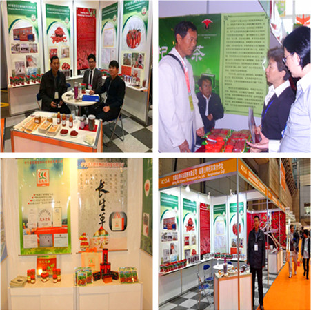 Goji Berry Exhibition