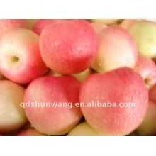 Manzana de gala