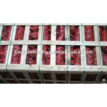 2012 Porzellan rote Zwiebel Heißer Verkauf