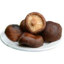 Health Food Canned Food Canned Shiitake Mushroom