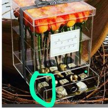 Caixa De Plexiglass Caixa De Flores De Acrílico PMMA Box Com Gaveta