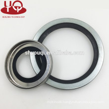 Hot Rubber truck wheel hub oil seal Machinery Hydraulic Metal frame SB Oil Seals