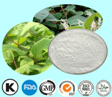 Resveratrol Extract Manufacturer from China