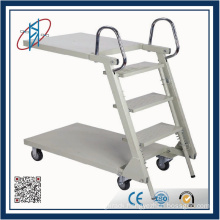 Steel Folding Step Ladder