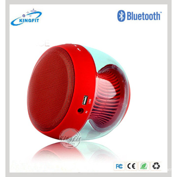 Bluetooth Handsfree FM Speaker Wireless Portable Car Speaker
