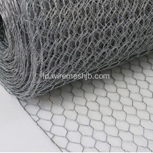SS Hexagonal Wire Netting