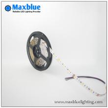 Le plus populaire DC12 / 24V SMD LED Strip Light avec Ce RoHS