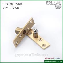 Hot sale brass &stainless steel pivot hinge for door