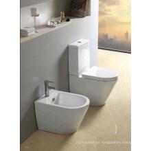 Inodoro Deluxe de dos piezas lavable (W1309)