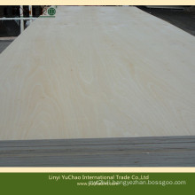 White Birch Plywood for Packing Usage