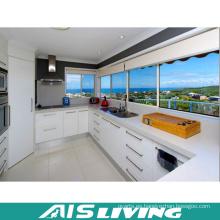 Muebles de armarios de cocina de diseño libre (AIS-K228)