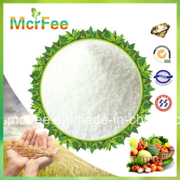 Chine Hot Sale 00-00-50 Sop Potassium Sulphate Fertilizers for Agriculture