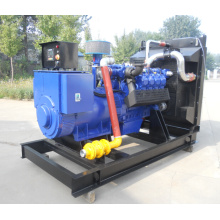 Germany quality exceed your imagination of 300KW Deutz gas generator