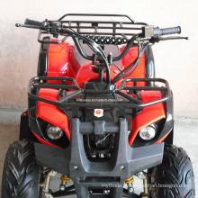 Qualidade estável de alta qualidade ATV, 50cc ATV 110cc ATV 125cc ATV para a bicicleta do quadriláter dos miúdos (ET-ATV004)