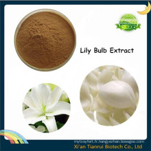 Natural Lilium Brownii, Extrait d'ampoule Lily