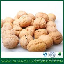 Nourriture naturelle pure dans les coquilles de noix noires d'alibaba pour les personnes qui mangent