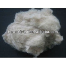 light grey/brown mongolian cashmere fiber