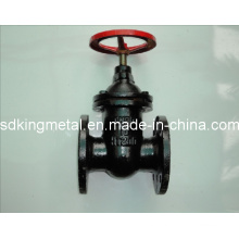 Pn10 DIN3352 F4 Cast Iron Gate Valve
