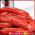 Top quality goji fruit goji berries dried goji with low pasiticide