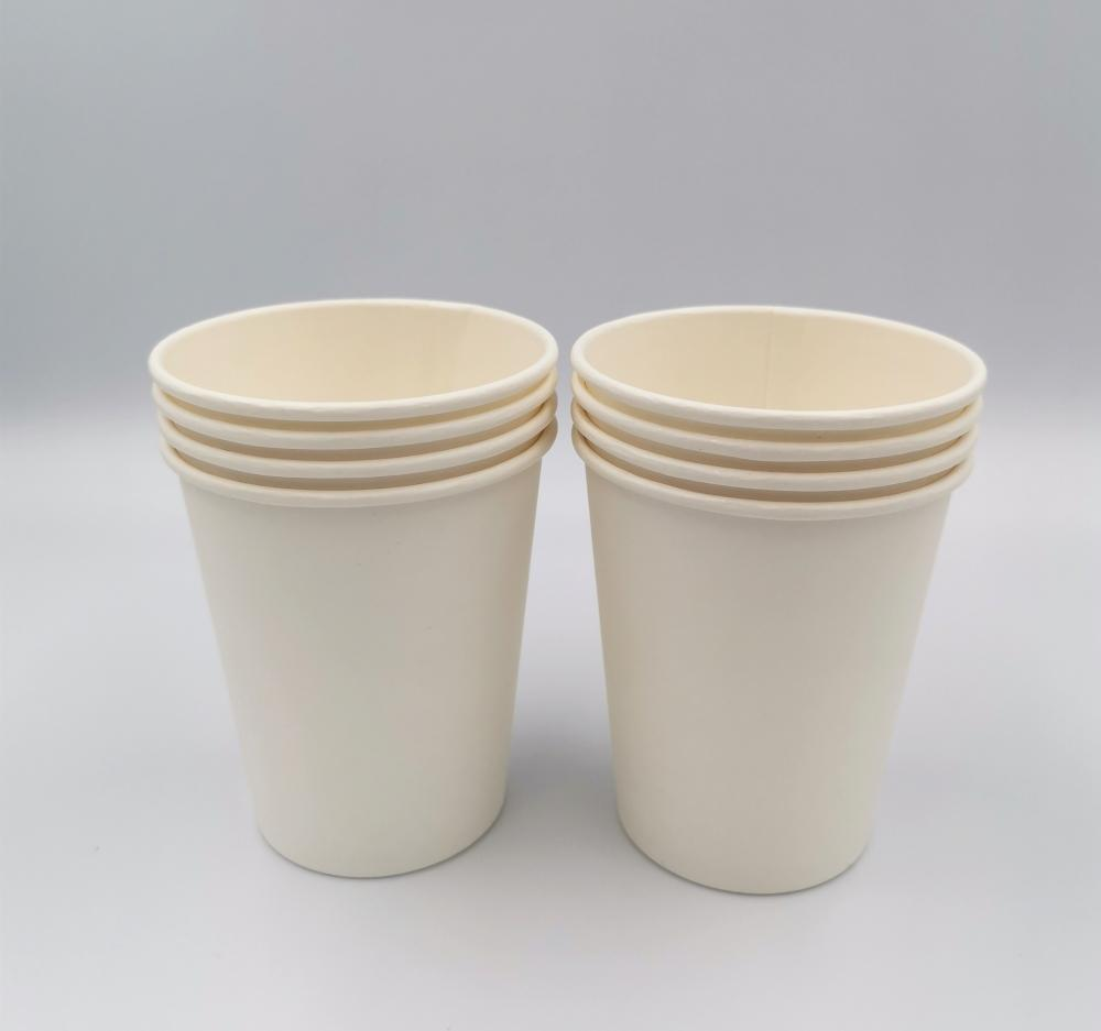 PLA Compostable Paper Drinking Cup