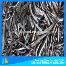 all types of frozen fish sand lance supplier
