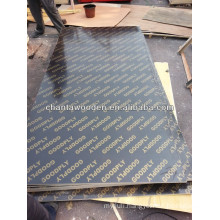 12mm 15mm 18mmm phenolic glue shuttering plywood for construction
