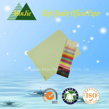 Colorido, coloridos, colorido, mutilpurpose, feito sob encomenda, tamanho, escritório, cópia, papel