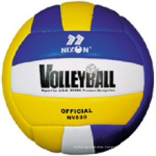 Professional Volleyball (NE530)