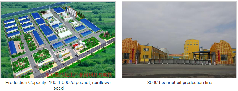 Peanut Oil, Sunflower Seed Oil Production Line