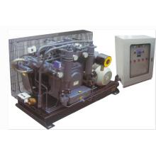 Compresor de pistón de alta presión alternativo de la estación de energía hidroeléctrica (K2-60WHS-1160H)