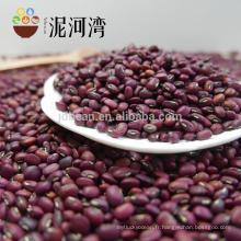 La meilleure qualité 2012 nouvelle récolte bien haricot rouge bien choisi sur la vente chaude