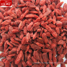 New arrival top quality factory supply wholesale bayas de goji