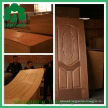 Veneer HDF/MDF Moulded Door Skin