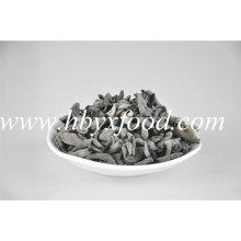 0.7-1.5cm Épi en bois sec Champignon noir