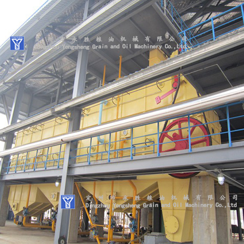 machine for canola oil extraction