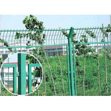 Eco-Friendly Frame Fence for Protection