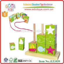 La inteligencia caliente del patrón magnético de la venta bloquea los juguetes