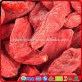 Poulet halal goji berry goji guarana frozen goji berry with low price