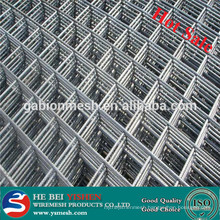 construction galvanized 5x5 welded wire mesh( factory)