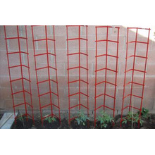 Stacking Tomato Ladder Cage