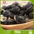 Hochwertige natürliche organische schwarze goji Beeren / schwarze chinesische Wolfberry