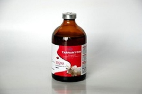 Lincomycin Hcl Veterinary Injection