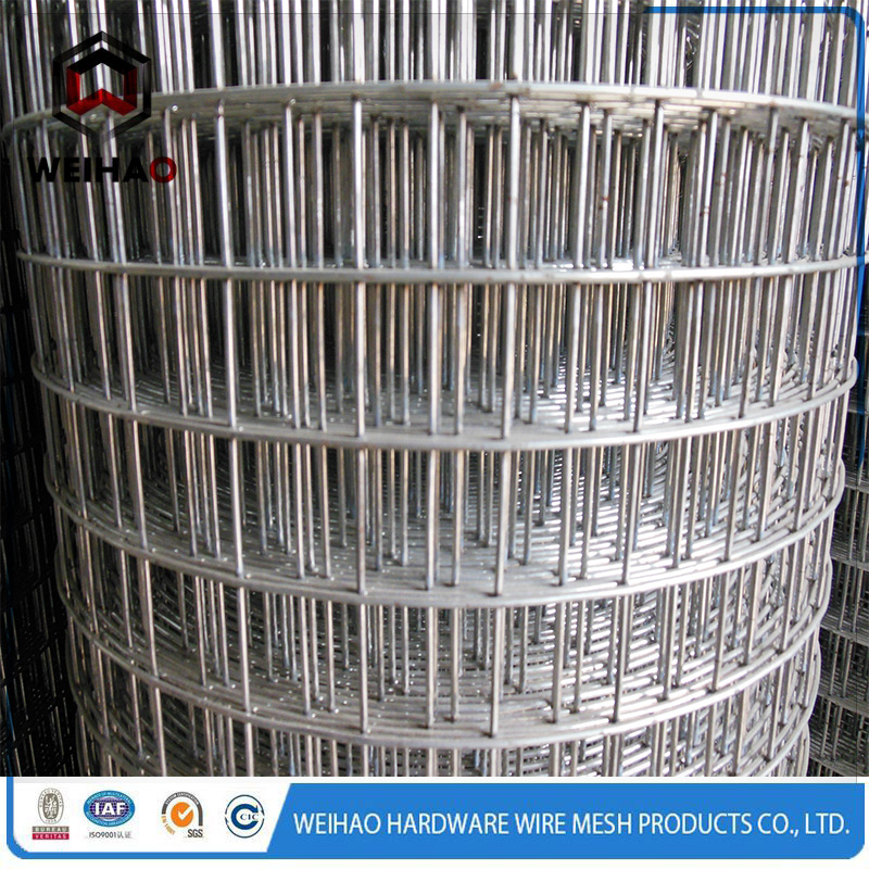 welded wire mesh 11