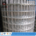 Hot-dipped galvanized wire mesh