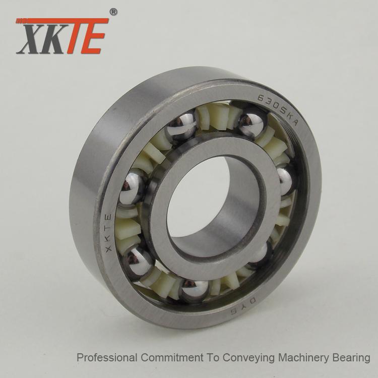 6305 C3 Nylon Ball Bearing