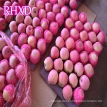 precio de mercado de la fruta importador de manzana fresca
