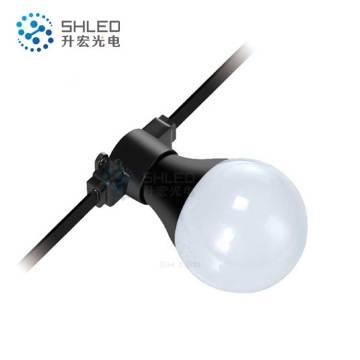 Addressable Waterproof IP65 LED Bulb Festoon Lighting